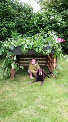 The finished Wild Den